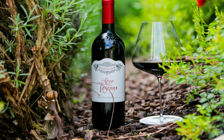 Consorzio vino del Chianti: ecco la Cantina Poggio del Moro